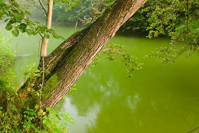Rzeka Ruda, 001