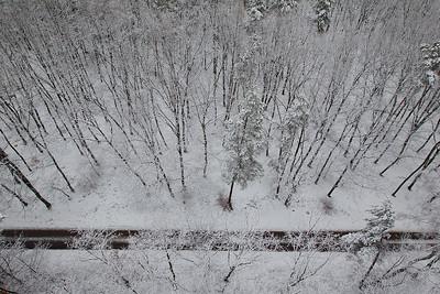 Zimowy las, 002