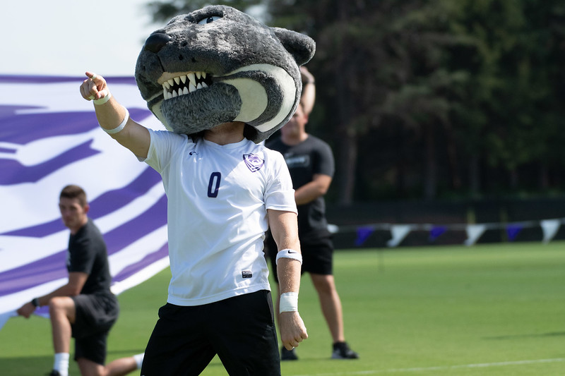 Willie Wildcat pumps up the crowd before K-State and the Longhorns kick off at the K-State soccer stadium. Sept 29, 2019 (Dylan Connell | Collegian Media Group)