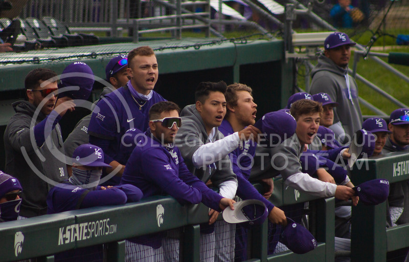 The Kansas State University baseball team reacts to a play from the K-State dugout on Saturday, April 17th. They won 3-2 in the first game of their doubleheader against Oklahoma University. (Natalie Leonard l Collegian Media Group)