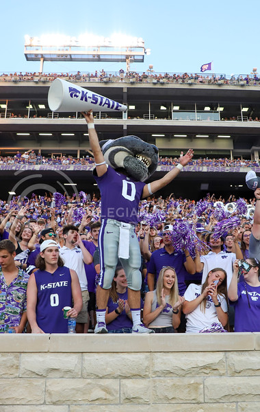 Willie the Wildcat cheering along with fans in the crowd.