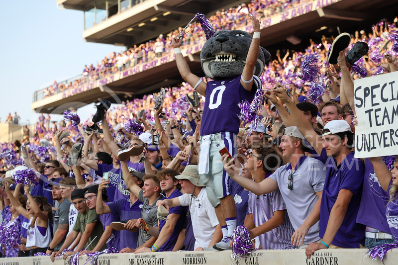Willie the Wildcat encouraging fans to get loud before a third down play.