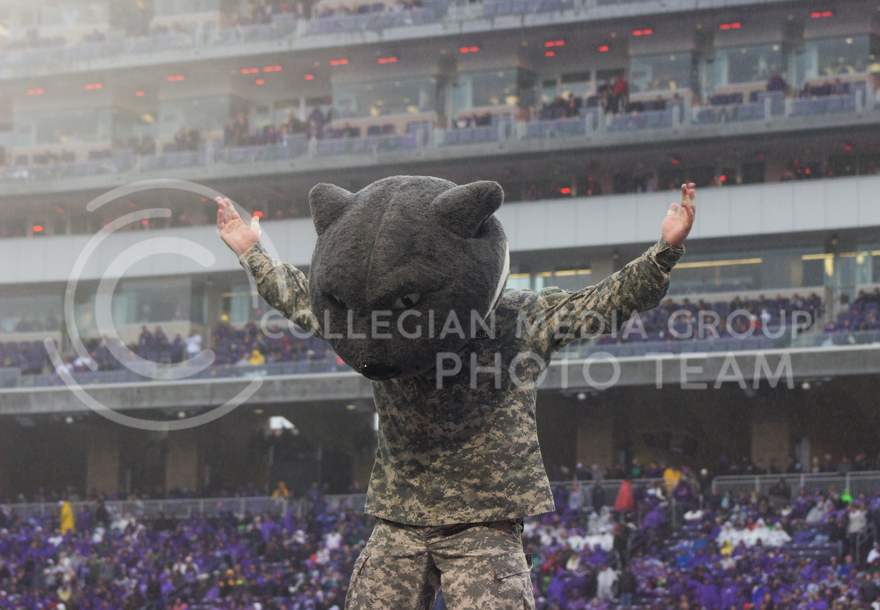Willie the Wildcat at the game on Veterans Day against the West Virginia Mountaineers at Bill Snyder Family Stadium, in Manhattan, KS, on Nov. 11, 2017. (Regan Tokos| Collegian Media Group)