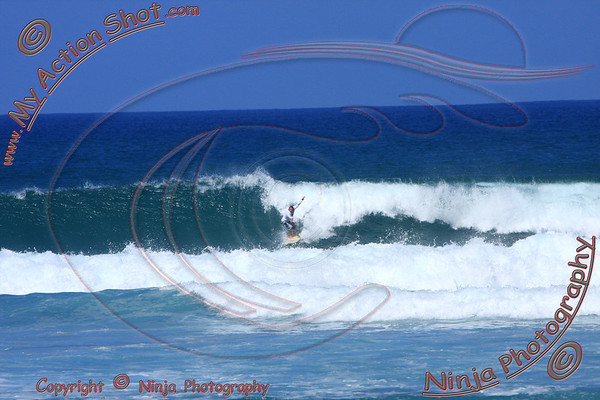 2010-12-08(115)8013