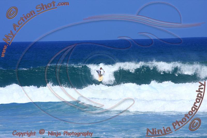 2010-12-08(115)8010