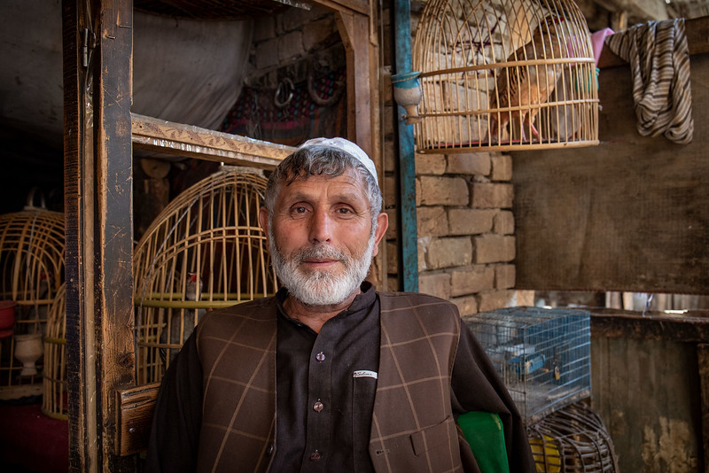 Bird seller, Ka Faroshi bird market.