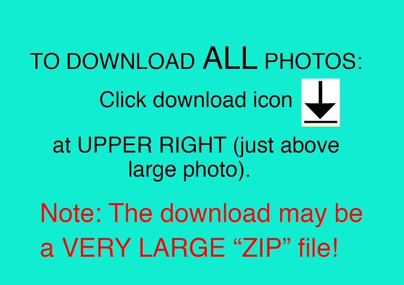 How to Download ALL photos Info-2017-v3 copy