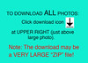 How to Download ALL photos Info-2017-v3 copy