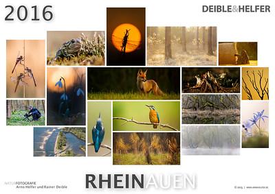 RHEINAUEN-Kalender 2016