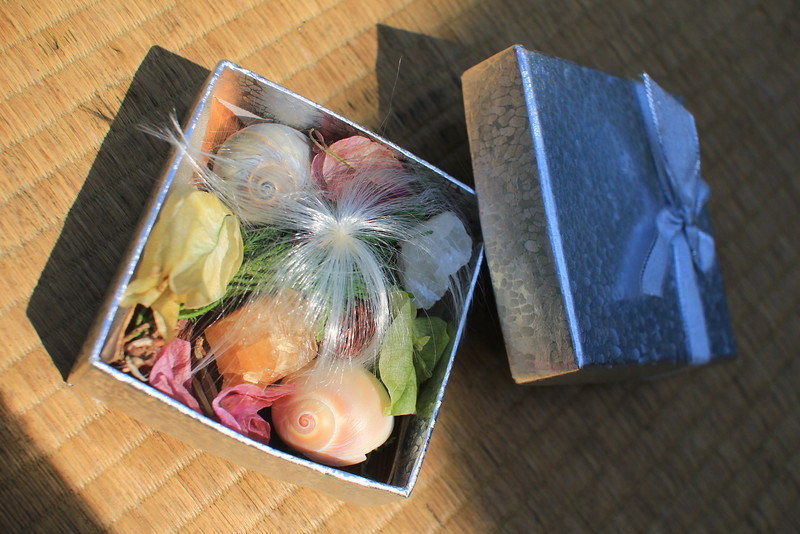 """Gifts from the Ocean's side - """"You & Her"""" Christmas & New Year presents (+bouquet di tre conifere)"""