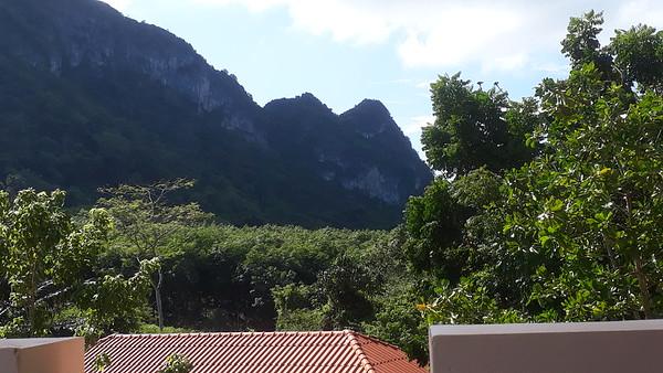 """View with Tamanu Tree  on a right (Punnaga - """"Kalos Tree"""")"""