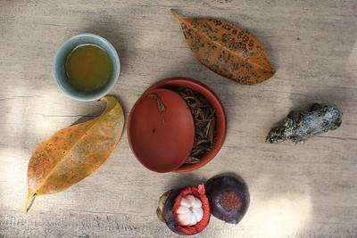 Tea & mangusteen with Rhino