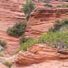 slot canyon sm    4