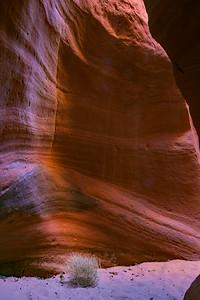 slot canyon     sm     711