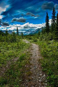 Big Elbow Trail, Kananaskis