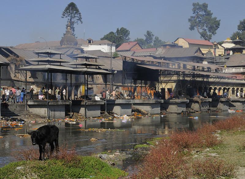 The Bagmati river at Pashupatinath.