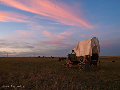 Kansas 150th, Cattle Drive