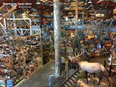 The Bass Pro Shop