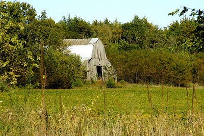 Old barn near Diamond Springs