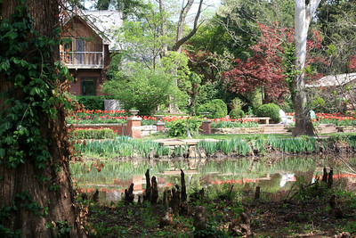 Caretaker's house, cypress knees and flower gardens. Photo by Karen.
