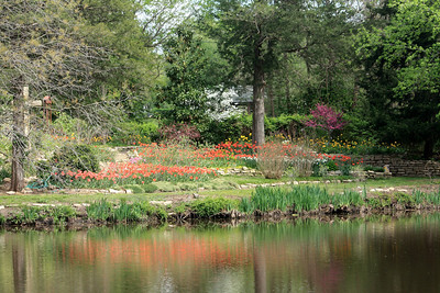 Flower gardens seen across pond. Photo by Karen.