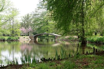 Arch bridge over pond. Photo by Karen.