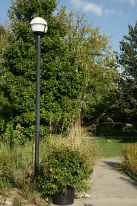 Lamp, flowers and trees along walk