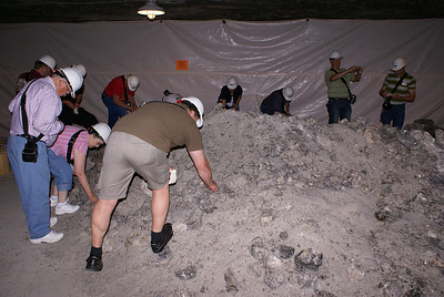 Tour members gathering salt chunks from scrap pile.