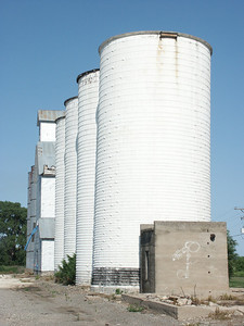 Grain bins and elevator