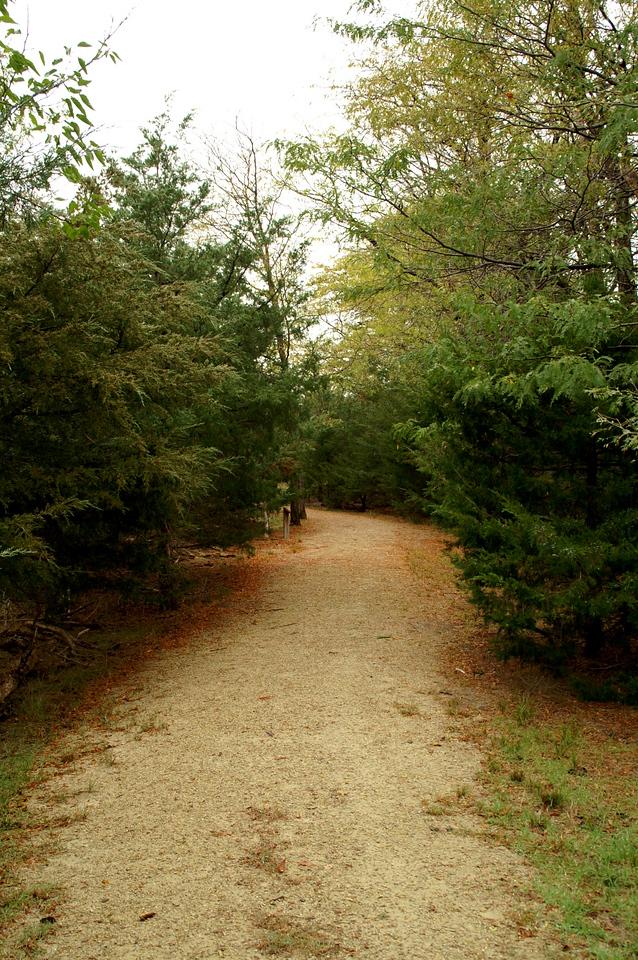 Migrants Mile foot trail