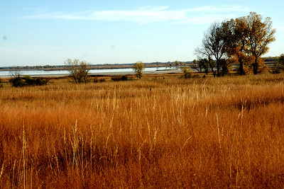 Big Salt Marsh seen from overlook