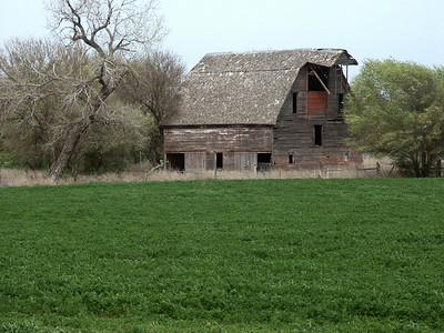 Large old abandoned barn near North Fork Ninnescah River in Southeast Stafford County