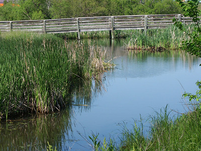 Pond and footbridge at Chisholm Creek Park