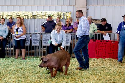 ks_state_fair_2019_swine-9