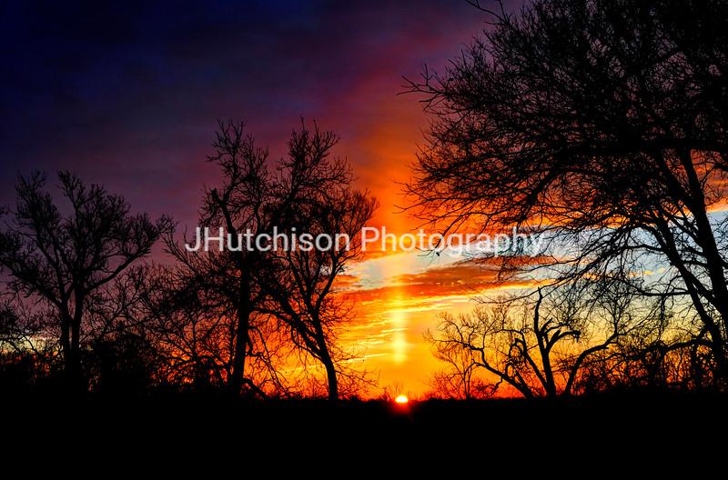 Sunrise Through the Cottonwoods