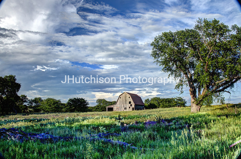 Barn in the Meadow
