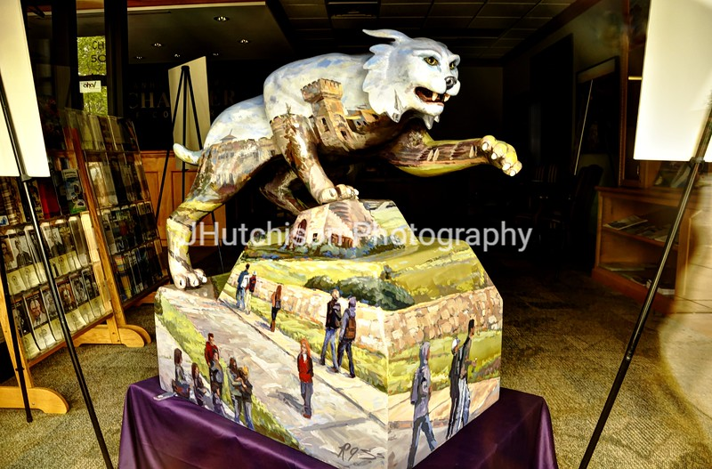 KSU0005 - Tradition Wildcat