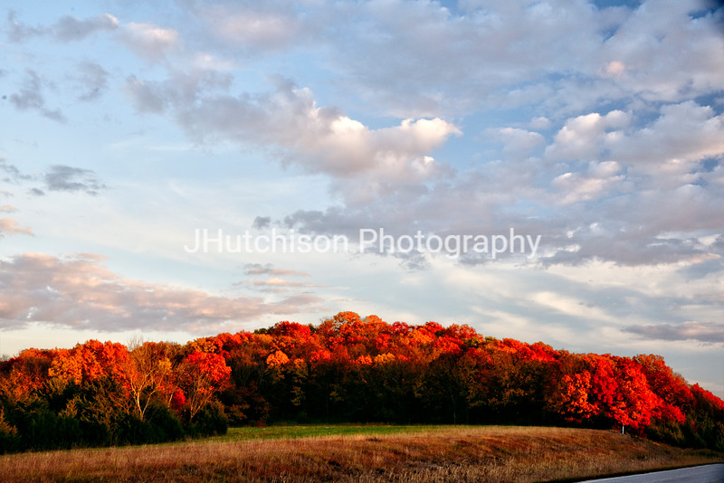 JF0003 - Autumn Splendor Along Ferguson Road