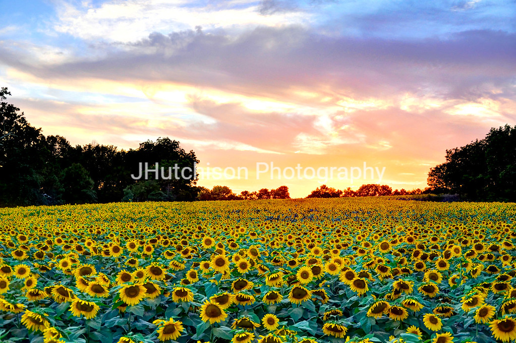 SUN0003 - Sunset Glow