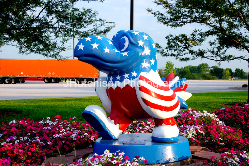 KU0028 - Uncle Sam Hawk