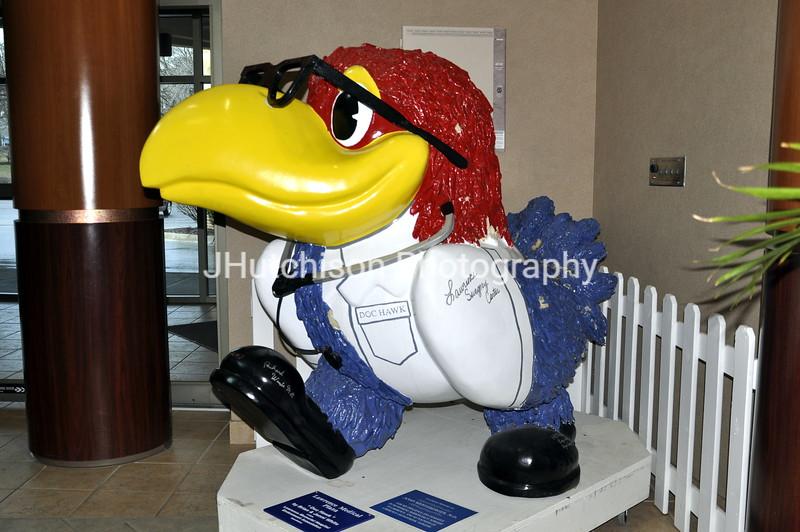 KU0004 - Doc Hawk