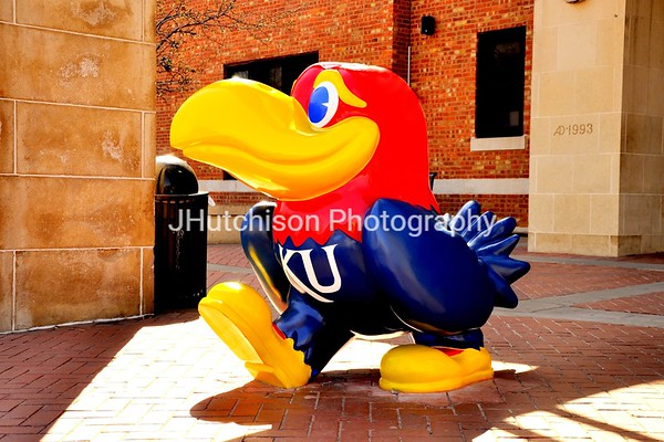 KU0001 - Classic Jayhawk