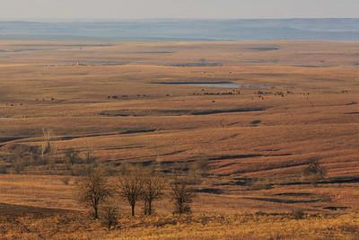 Western Mustangs @ Flint Hills