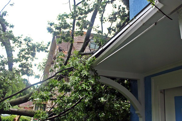 Some of damage of our house