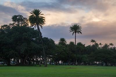 Kapiolani Park 2017