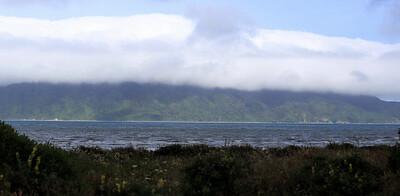 Kapiti Island 003.JPG