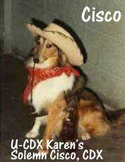 """U-CDX Karen's Solemn Cisco CDX<br /> """"The Cisco Kid"""""""