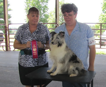 U-CH Karashome's Bi Bi Blues<br /> Judge  -  Teresa Werner<br /> Handler  -  Terri Creech