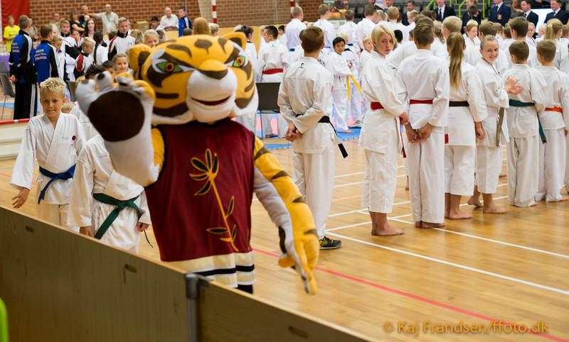 Tiger Cup 2013 -0006-DSCF6520