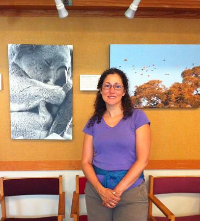 MASS AUDUBON, BROADMOOR WILDLIFE SANCTUARY, NATICK, MA, U.S.A.- 2012